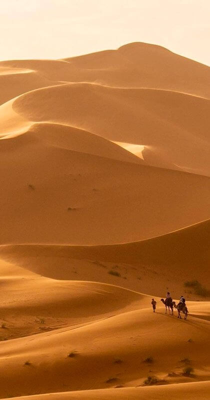 A couple deep in the desert being led by a guide up a giant dune