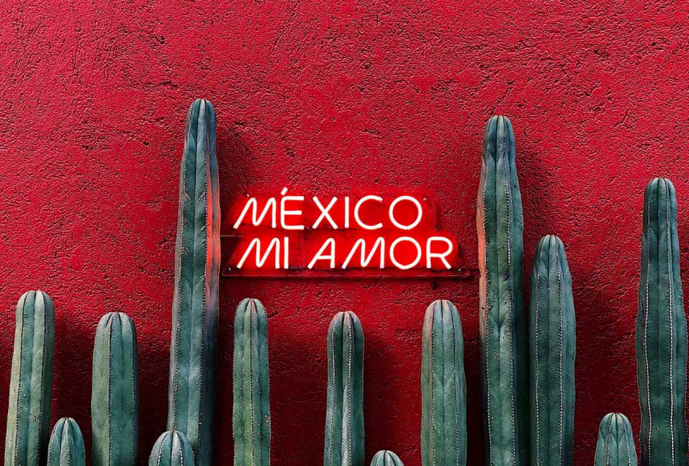 a neon sign saying 'Mia amore, Mexico!' on a print pink wall